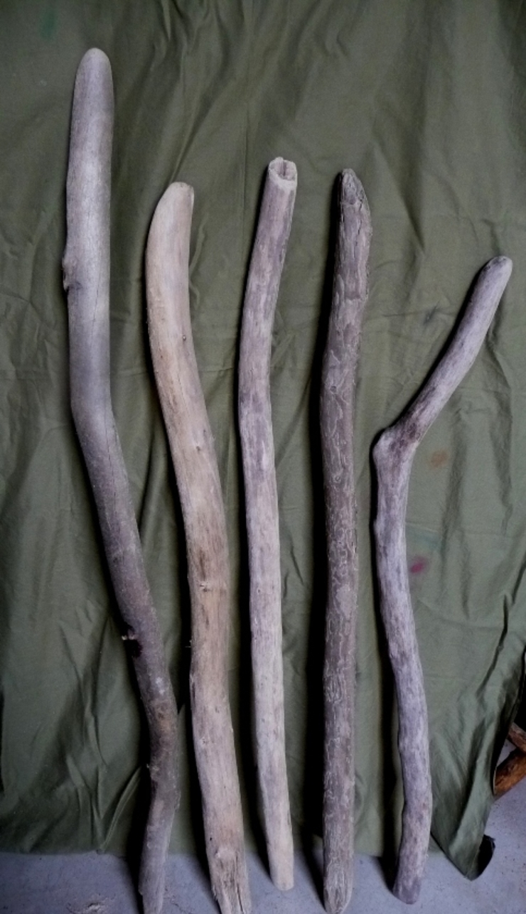 流木幹 L1500