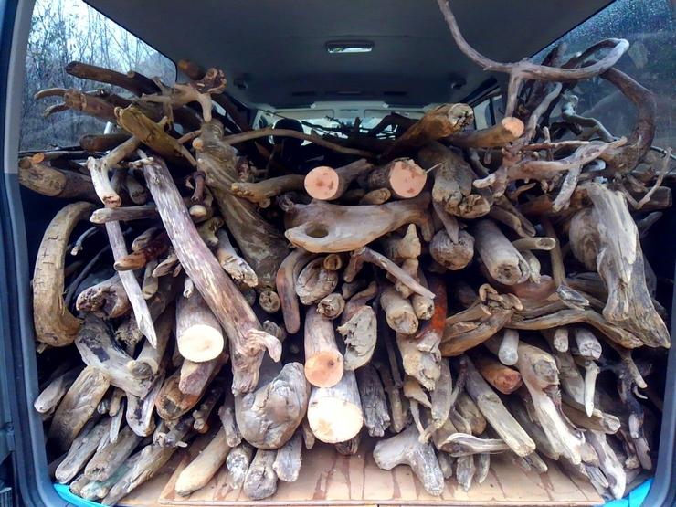 昨日流木が入荷しました!
