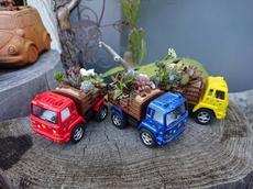 多肉寄植 ミニカーpot mini(ファームトラック) 3台セット
